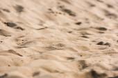 """Постер, картина, фотообои """"селективный фокус волнистый и золотой песок в пустыне"""""""