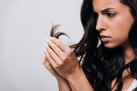 Photo pour Bouleversé brunette belle femme regardant les cheveux abîmés isolé sur gris - image libre de droit