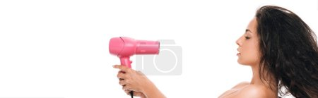 Photo for Panoramic shot of brunette beautiful woman styling curly hair with pink hairdryer isolated on white - Royalty Free Image