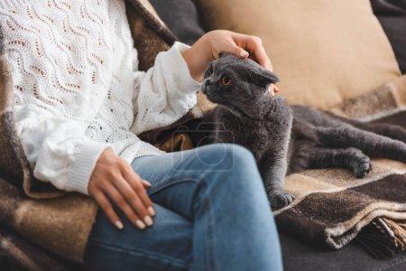 Photo pour Vue recadrée de la femme dans la couverture assise sur le canapé avec chat pliant écossais - image libre de droit