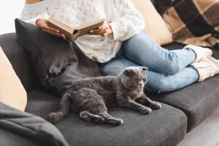 Photo pour Cropped view of girl reading book with scottish fold cat on sofa - image libre de droit
