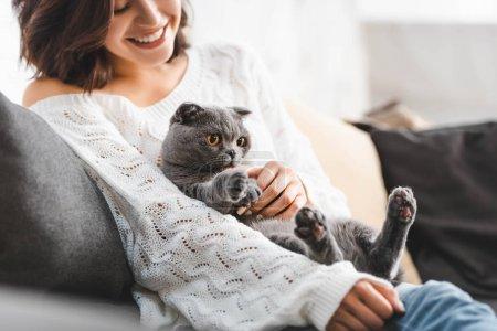 Photo pour Jolie jeune femme assise sur un canapé avec chat pliant scottish - image libre de droit