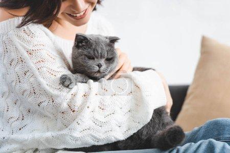 Photo pour Vue recadrée de belle femme heureuse assise sur le canapé avec chat pliant écossais - image libre de droit