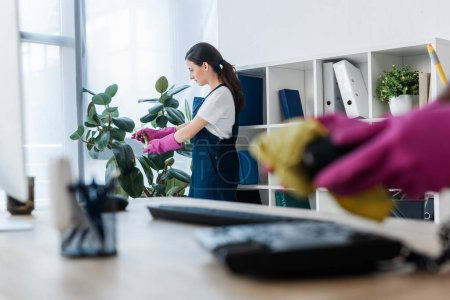 Photo for Selective focus of cleaner spraying plant near colleague cleaning telephone on office table - Royalty Free Image