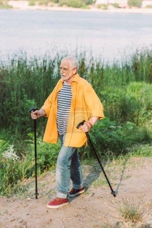 Photo pour Homme âgé marchant avec des bâtons sur le chemin dans le parc pendant l'été - image libre de droit