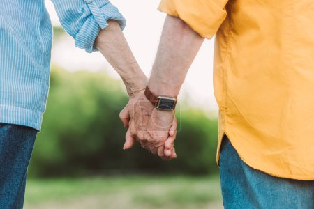 Cropped view of elderly couple holding hands outdoors