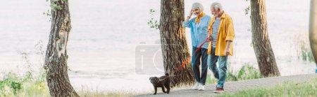 Photo pour Prise de vue panoramique d'une femme âgée souriante marchant près du mari et d'un chien en laisse dans un parc - image libre de droit