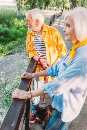 Älterer Mann mit Mops an der Leine steht neben Frau auf Brücke im Park