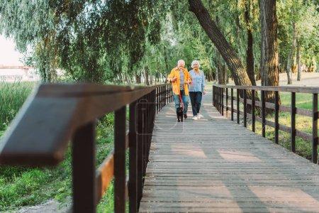 Photo pour Concentration sélective de sourire femme âgée marchant près du mari avec chiot chiot en laisse sur le pont dans le parc - image libre de droit
