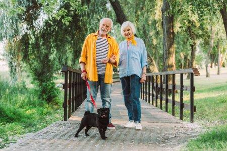 Photo pour Concentration sélective de sourire couple âgé avec chiot en laisse marche dans le parc pendant l'été - image libre de droit