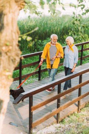Photo pour Foyer sélectif de sourire homme flânant avec femme et chiot chiot sur pont dans le parc - image libre de droit