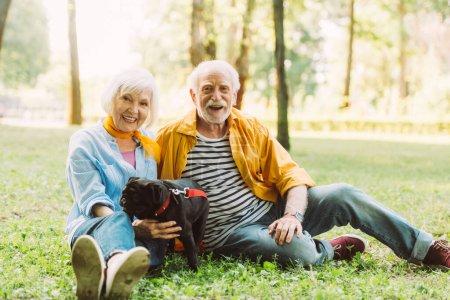 Photo pour Foyer sélectif de sourire couple âgé avec chiot chiot regardant la caméra sur l'herbe dans le parc - image libre de droit