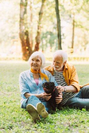 Photo pour Foyer sélectif de sourire vieux couple chiot chiot chiot caressant sur l'herbe dans le parc - image libre de droit