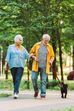 Photo pour Focus sélectif de joyeux couple de personnes âgées marchant avec chiot en laisse dans le parc - image libre de droit