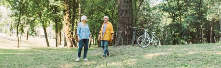 Photo for Panoramic orientation of smiling senior man walking on lawn near wife in park - Royalty Free Image