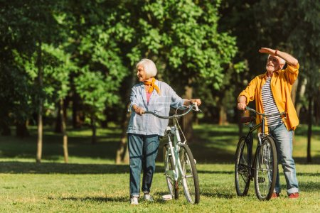 Smiling grey haired couple standing near bikes on meadow in park