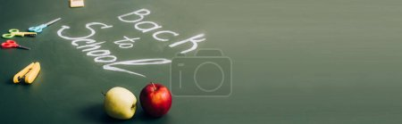 selective focus of ripe apples near back to school lettering and school supplies on green chalkboard, panoramic shot