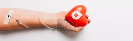 Photo for Cropped view of male hand with red heart and catheter on white, blood donation concept - Royalty Free Image