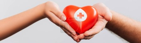 cropped view of man and women holding red heart isolated on white, blood donation concept