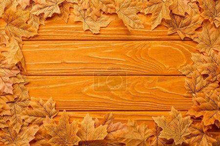 Photo pour Top view of autumnal foliage arranged in frame on wooden background - image libre de droit