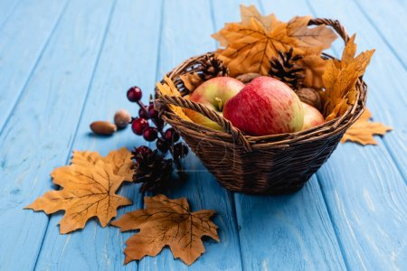 Photo pour Autumnal wicker basket with apples and foliage on blue wooden background - image libre de droit