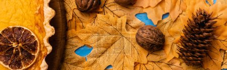 top view of pumpkin pie on autumnal foliage with walnuts and cone, panoramic shot