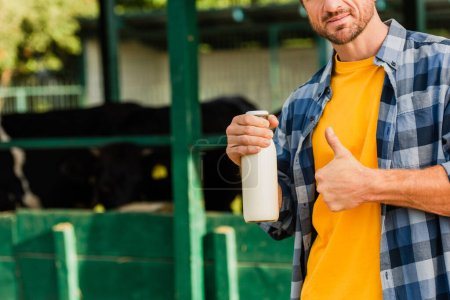 Photo for Partial view of farmer holding bottle of fresh milk and showing thumb up near cowshed - Royalty Free Image