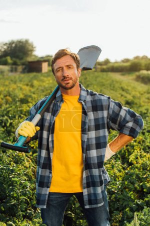 Photo for Farmer in plaid shirt looking at camera while standing in field with shovel - Royalty Free Image