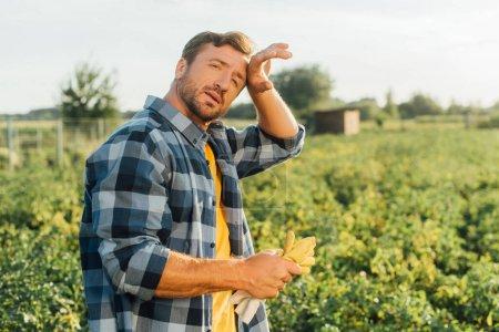 agriculteur épuisé en chemise à carreaux touchant le front tout en regardant la caméra
