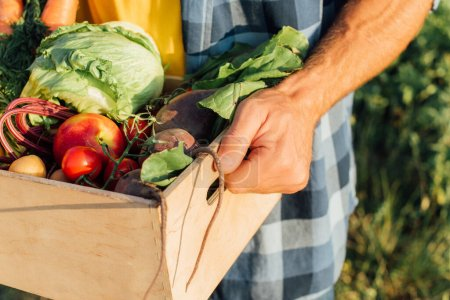 Photo for Cropped view of farmer holding wooden box with fresh vegetables - Royalty Free Image