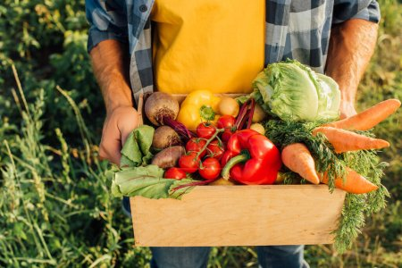 Photo for Cropped view of farmer holding wooden box with fresh cherry tomatoes, bell peppers, cabbage, carrots and beet - Royalty Free Image