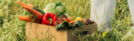 Photo for Cropped view of farmer in rubber boots near wooden box with fresh vegetables, panoramic concept - Royalty Free Image