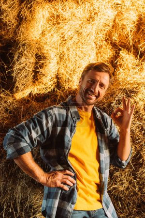 Photo for Rancher in plaid shirt showing okay gesture while looking at camera near hay stack - Royalty Free Image