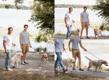 Photo pour Collage de père et fils marchant avec des récupérateurs d'or près du lac - image libre de droit