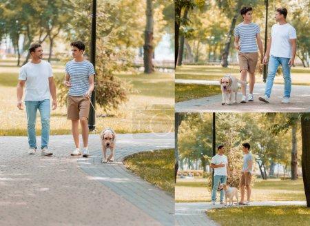 Photo pour Collage de père et fils marchant avec golden retriever dans le parc - image libre de droit