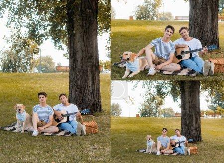 Photo pour Collage de père jouant de la guitare acoustique et assis sur une couverture près de fils et golden retriever - image libre de droit