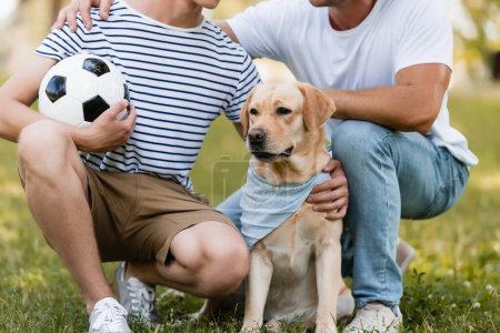 cropped view of father sitting near teenager son with football and golden retriever