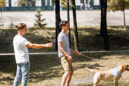 father pointing with hand near teenager son walking in park with golden retriever
