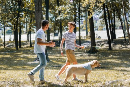 Photo pour Father looking at teenager son walking in park with golden retriever - image libre de droit