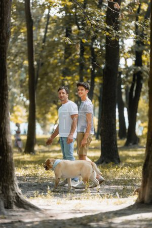 selective focus of father and teenager son looking at camera while standing in park with golden retriever