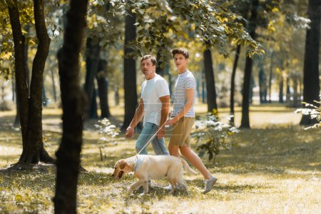 Photo pour Selective focus of father and teenager son looking at camera while walking in park with golden retriever - image libre de droit