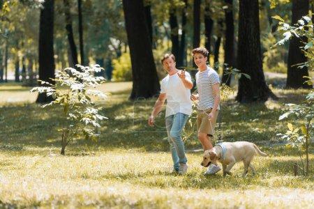Photo pour Homme pointant avec la main près de fils adolescent marchant dans le parc avec golden retriever - image libre de droit