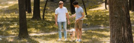 horizontal image of father and teenager son looking at golden retriever in park