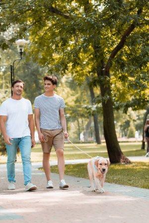 Photo pour Adolescent fils et père marche avec golden retriever sur asphalte - image libre de droit