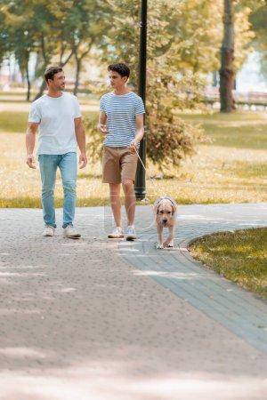 Photo pour Adolescent fils et père regardant l'autre et marchant avec golden retriever sur asphalte - image libre de droit