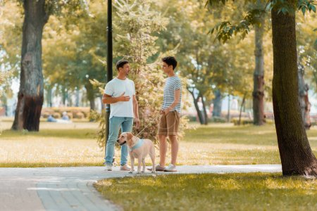 Photo for Teenager son and father looking at each other, talking and stand with golden retriever on asphalt - Royalty Free Image