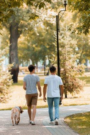 Photo pour Vue arrière de fils et père adolescent marchant avec golden retriever sur asphalte - image libre de droit