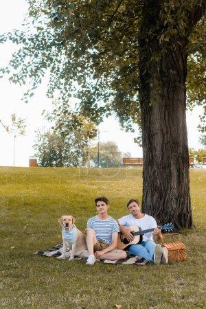 Photo pour Adolescent et père assis sur couverture près golden retriever sous tronc d'arbre - image libre de droit