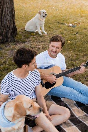Photo pour Père jouer de la guitare acoustique près de fils adolescent et golden retrievers dans le parc - image libre de droit