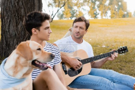 Photo pour Selective focus of father playing acoustic guitar near teenager son and golden retriever in park - image libre de droit